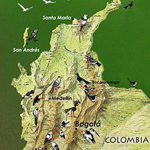 colombiamap_sq